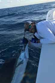 56' Luxury Yacht Offshore Fishing Charter from Sandestin