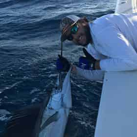 Sandestin Bay, Gulf, or Offshore Fishing Charter