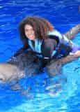 Royal Swim with Dolphins at Gulf World Marine Park