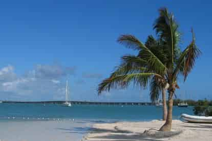 Key West Day Trip with Glass Bottom Boat Ride