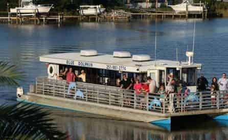 Daytime Dolphin Cruise with Blue Dolphin Tours at The Flora-Bama