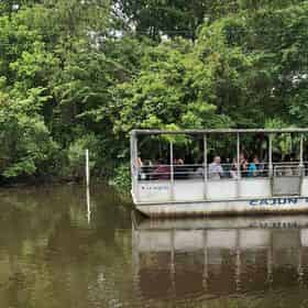 Cajun Pride Swamp Tours with Lunch by United Front Transportation Services