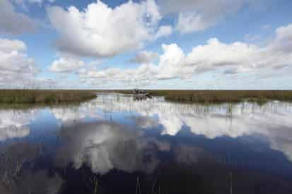 Sawgrass Recreation Area Admission by Gray Line Miami