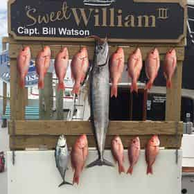 Deep Sea Fishing Charter Aboard The Sweet William III