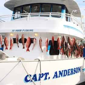 Deep Sea Party Boat Fishing in Panama City Beach - 10 Hour Trip