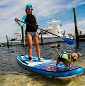 4 Hour Stand Up Paddle Board Rental with WET Inc.