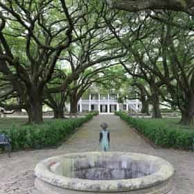 Whitney & Oak Alley Plantation Tour Transportation Included