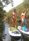 Mangroves and Manatees 2 Hour Eco-Tour