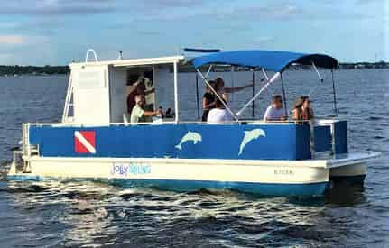 2 Hour Private Dolphin Cruise and Sightseeing Tour (up to 6 passengers)