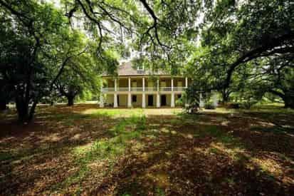 Oak Alley Antebellum Plantation & Pontoon Swamp Boat Tour with Transportation