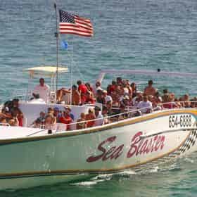 Snorkel and Dolphin Excursion on Destin's Original Sea Blaster