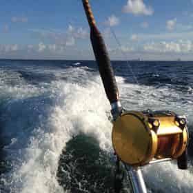 Semi-Private Group Fishing Charter Aboard The Olin Marler Fleet (15 Person Max)