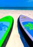 Destin Stand Up Paddleboard Rental