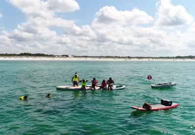 Grayton Beach Reef Snorkel Tour