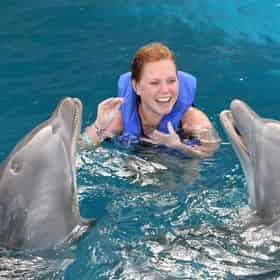 Dolphin Encounter at Gulf World Marine Park